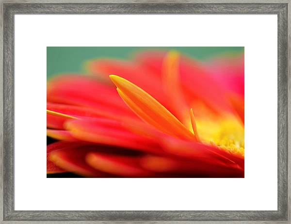Untouched Soul Framed Print