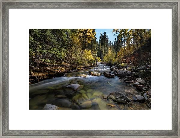 Up A Colorado Creek Framed Print