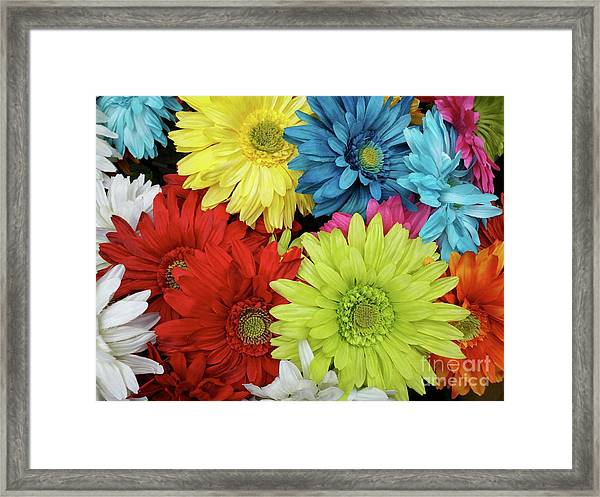 Up And Coming Framed Print