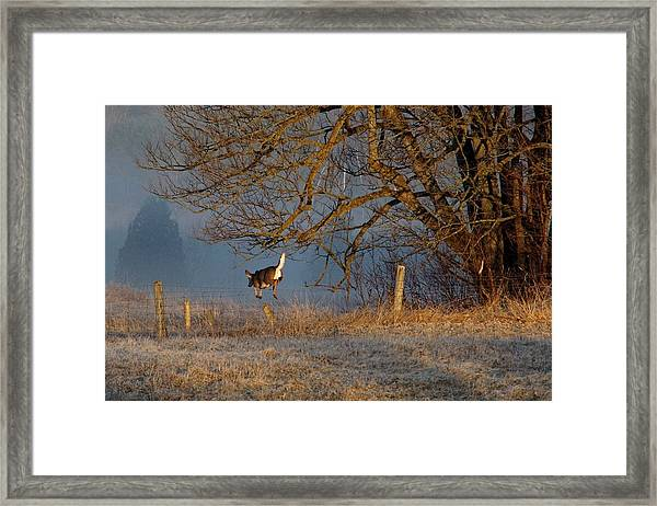 Up And Over Framed Print