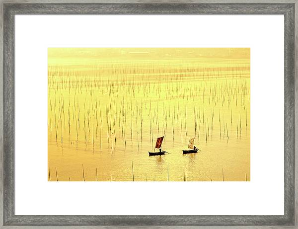 Up At Dawn. Framed Print