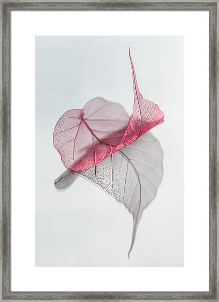 Uplifted Framed Print