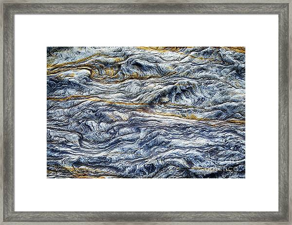 Upon The Seashore Framed Print