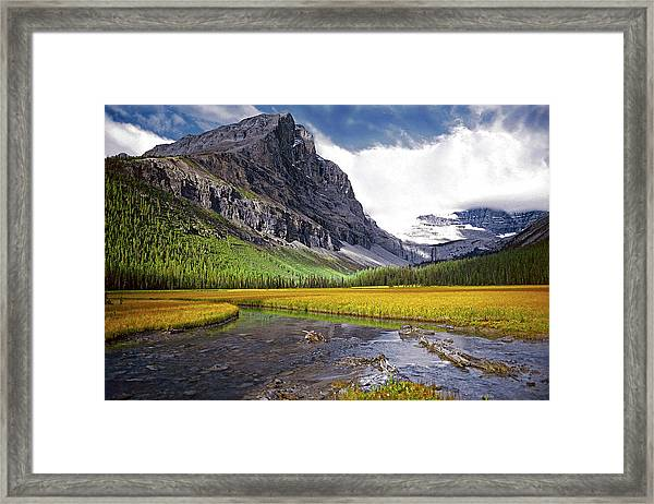 User Friendly Framed Print