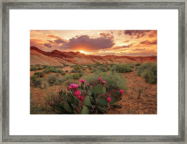 Valley Of Fire Framed Print by Johnny Adolphson