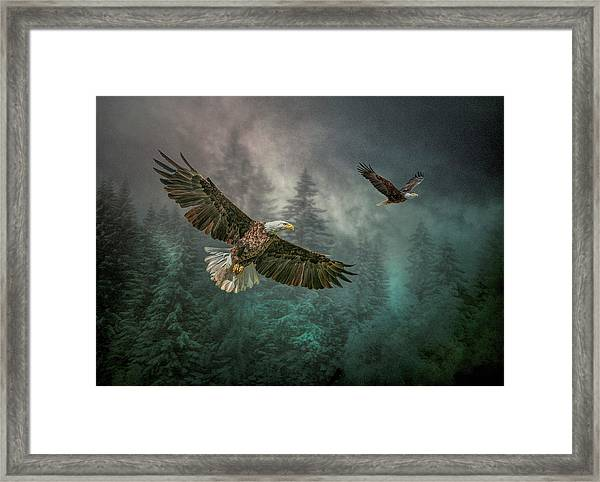 Valley Of The Eagles. Framed Print