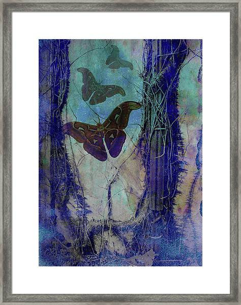 Vast Congeries Of Vital Forces II Framed Print