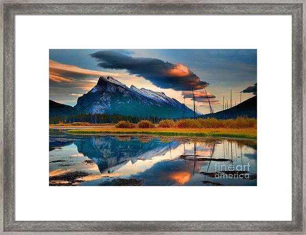 Vermillion Beauty Framed Print