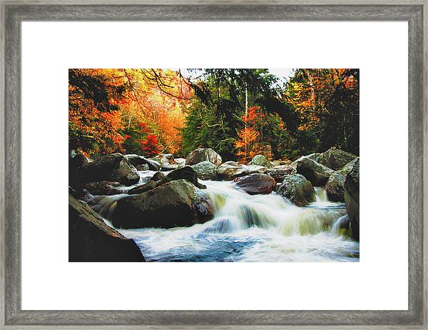 Vermonts Fall Color Rapids Framed Print