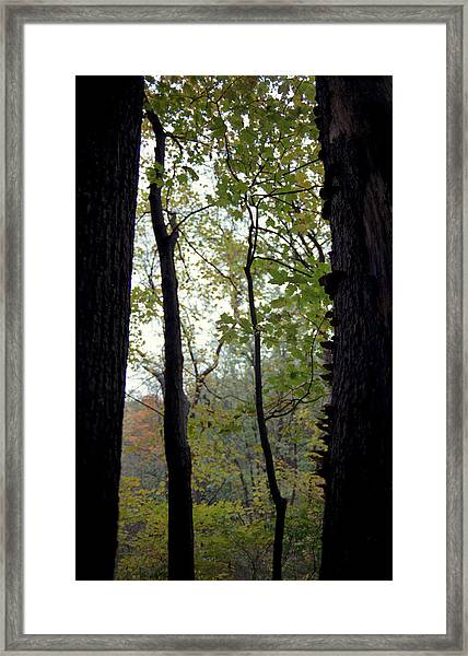 Vertical Limits Framed Print