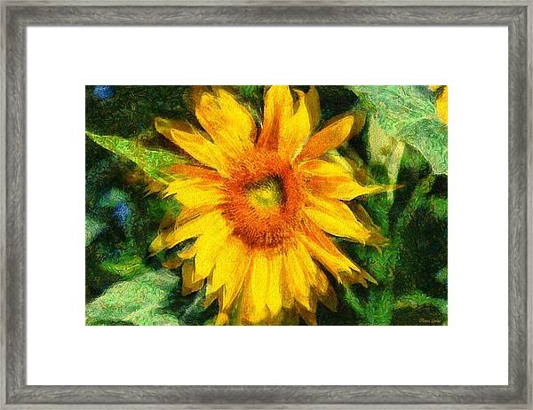 Very Wild Sunflower Framed Print