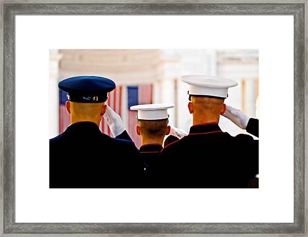 Veterans' Day Salute Framed Print