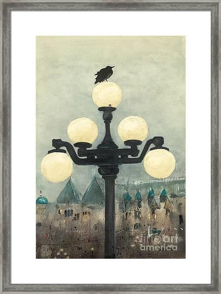 Victoria Evening Framed Print