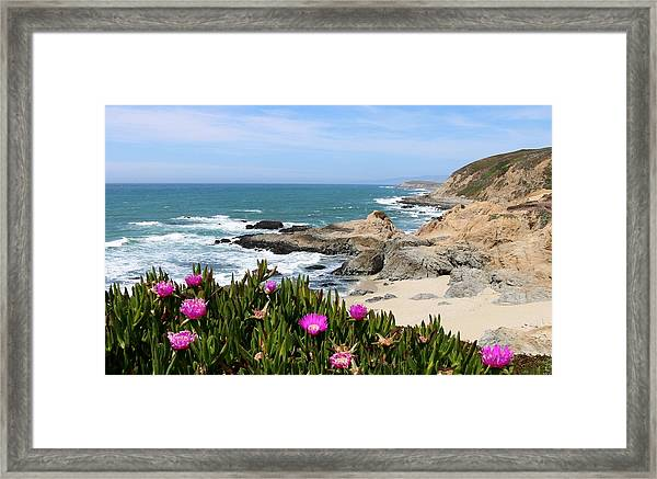 View From Bodega Head In Bodega Bay Ca - 3 Framed Print