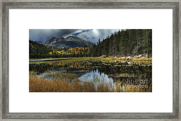View From Cub Lake Framed Print
