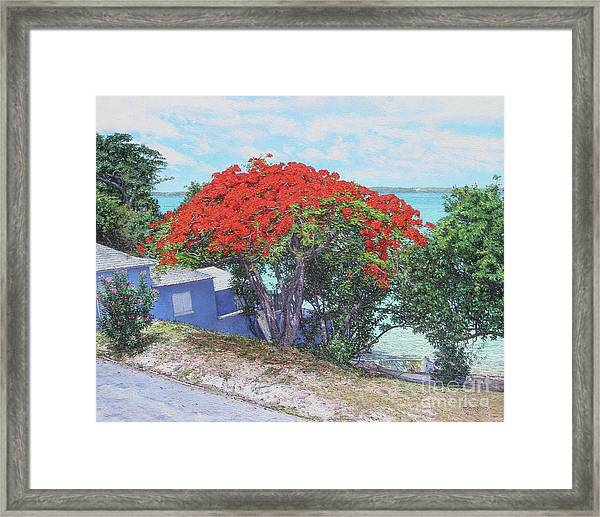 View From Hill Street Framed Print