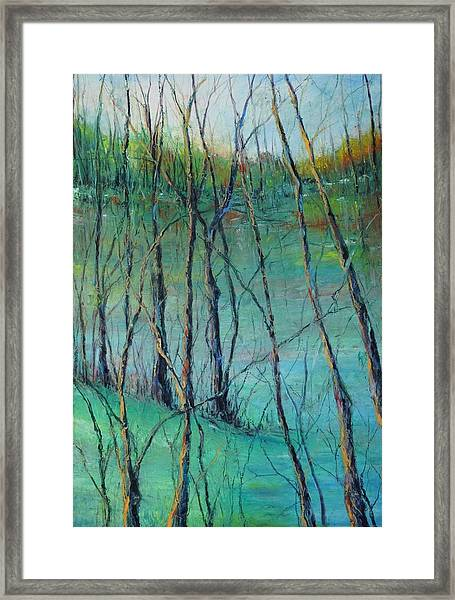 View Of Nature's Canvas Framed Print