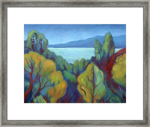 View Of San Francisco Bay Framed Print
