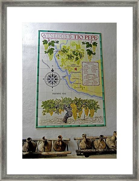 Vinedos Tio Pepe - Jerez De La Frontera Framed Print