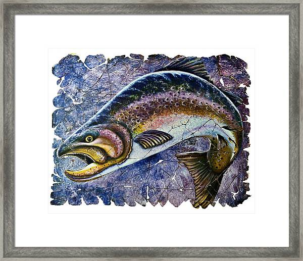 Vintage Blue Trout Fresco  Framed Print