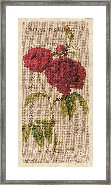 Vintage Burlap Floral 3 Framed Print