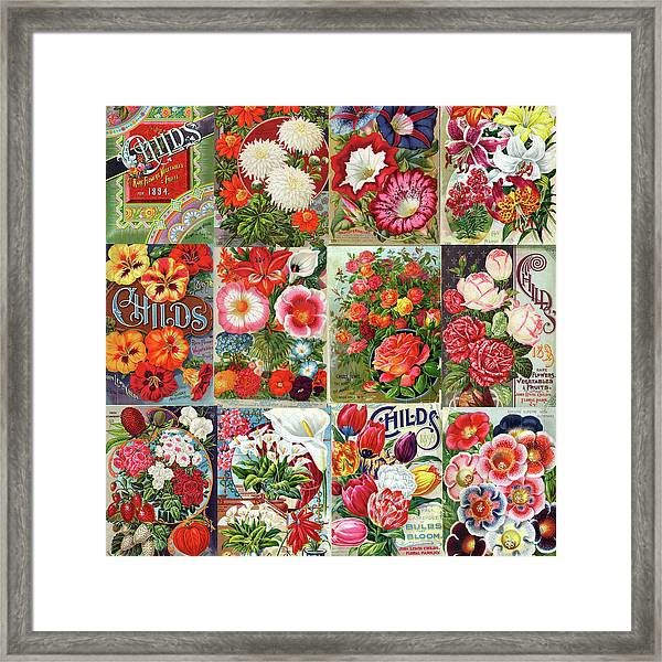 Vintage Childs Nursery Flower Seed Packets Mosaic  Framed Print