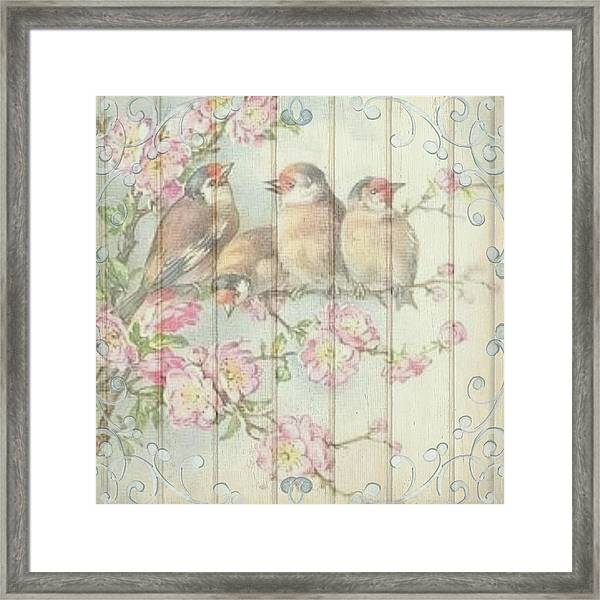 Vintage Shabby Chic Floral Faded Birds Design Framed Print