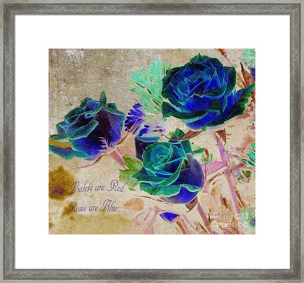 Violets Are Red- Roses Are Blue Framed Print