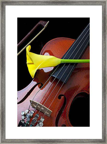 Violin With Yellow Calla Lily Framed Print