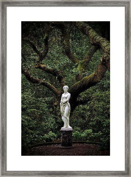 Virginia Dare Hdr 2016 Framed Print