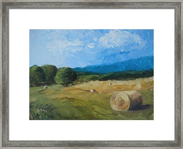 Virginia Hay Bales II Framed Print