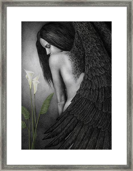 Visible Darkness Framed Print