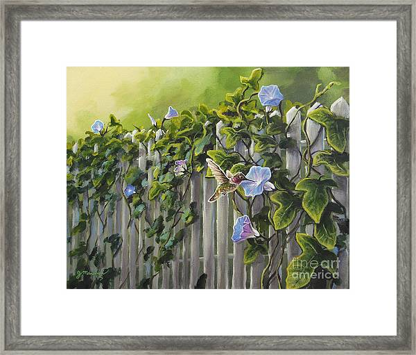 Visiting The Morning Glories Framed Print