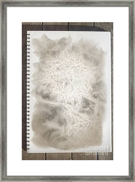 Visual Diary Dandelion Framed Print