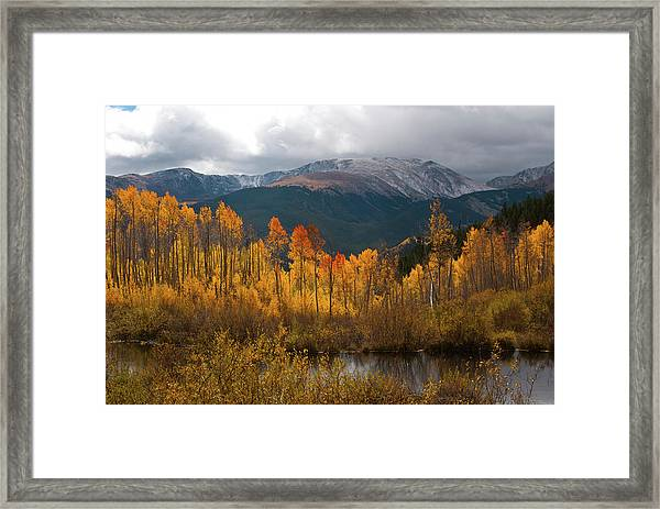 Vivid Autumn Aspen And Mountain Landscape Framed Print