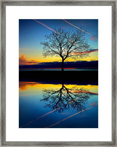 Vows Framed Print