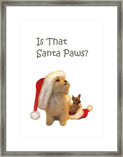 Waiting For Santa Paws Framed Print
