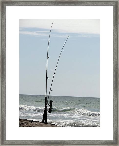 Waiting For The Bait Framed Print