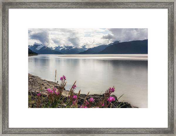 Waiting For The Bore Tide Framed Print