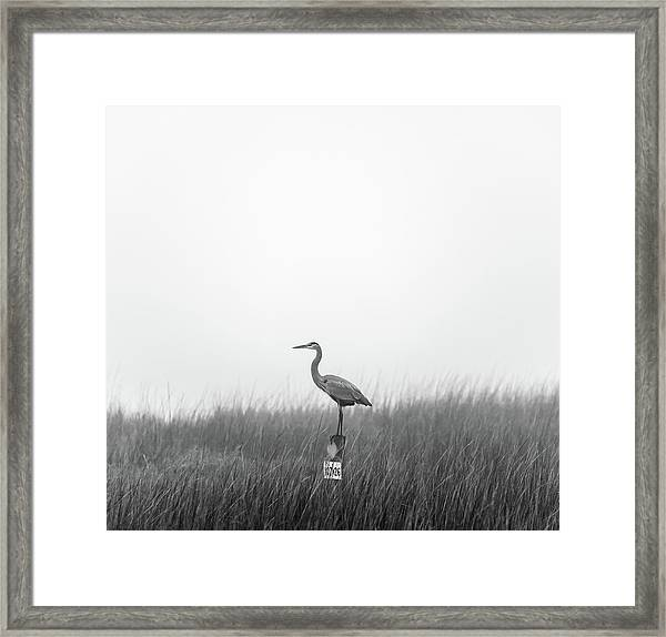 Waiting On The Fog To Clear Framed Print