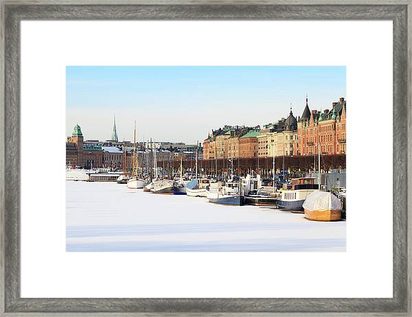 Waiting Out Winter Framed Print