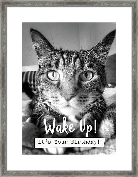 Wake Up It's Your Birthday Cat- Art By Linda Woods Framed Print