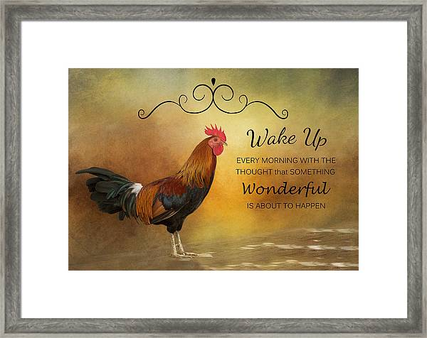 Wake Up Framed Print