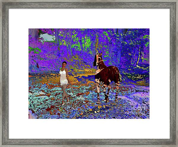 Walk The Enchanted Forest Framed Print