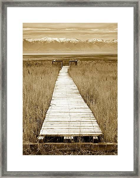 Walk With Me 1 Framed Print