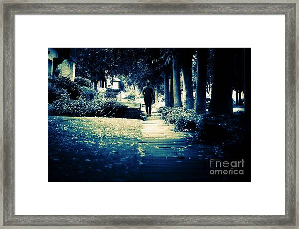 Walking A Lonely Path Framed Print