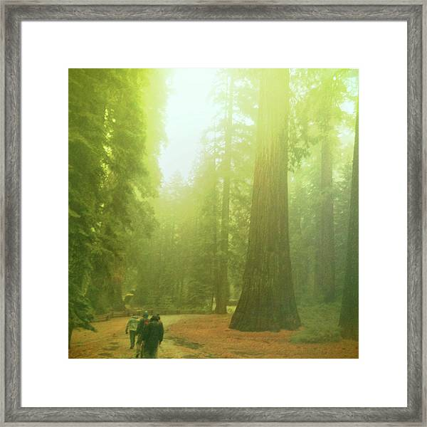 Walking By Giants Framed Print