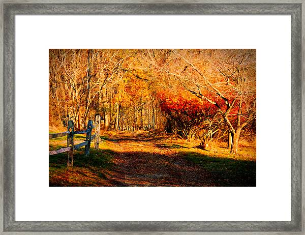 Walking Down The Autumn Path Framed Print
