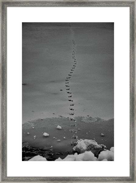 Framed Print featuring the photograph Walking On Thin Ice by Jason Coward