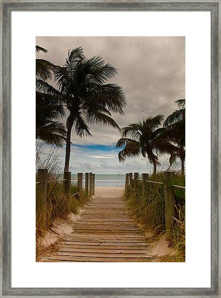 Walking To The Beach Framed Print by Patrick  Flynn